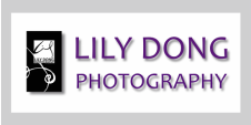 LILY DONG PHOTOGRAPHY